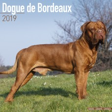 2019 DOGUE DE BORDEAUX AVONSIDE CALENDER