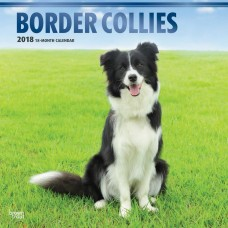 2018 BORDER COLLIES CALENDAR