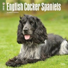 2018 ENGLISH COCKER SPANIEL CALENDAR